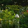 Adele's Garden