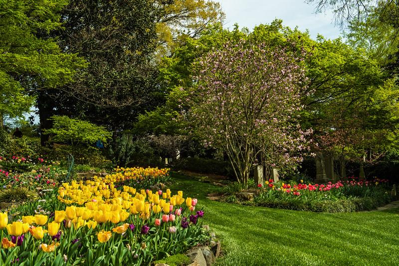 Memorial Gardens In Spring