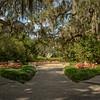 Brookgreen Gardens VI
