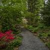 Upper Path