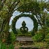 Iris Garden IV