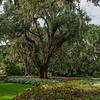 Brookgreen Gardens VIII