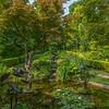 Yellow Garden III