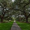 Brookgreen Gardens III