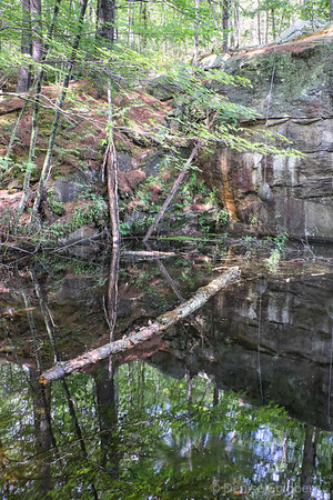 reflections at the quarry