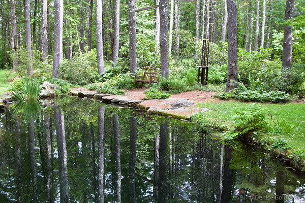 reflections, Bedrock Gardens