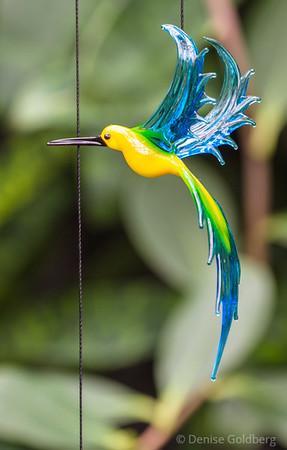 hummingbird in glass