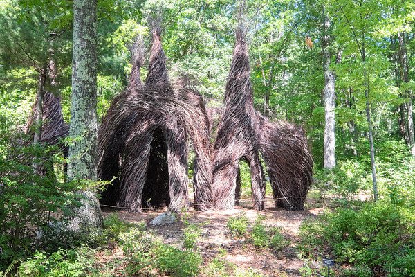 THE WILD RUMPUS: A STICKWORK SCULPTURE BY PATRICK DOUGHERTY