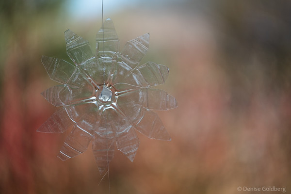 plastic ornament in a window