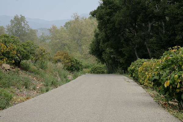 "9580<br /><a href=""http://www.smugmug.com/gallery/26743614_8sq8Fz#!i=2238295639&k=skn3RVc"">_View more photos from this location</a>"