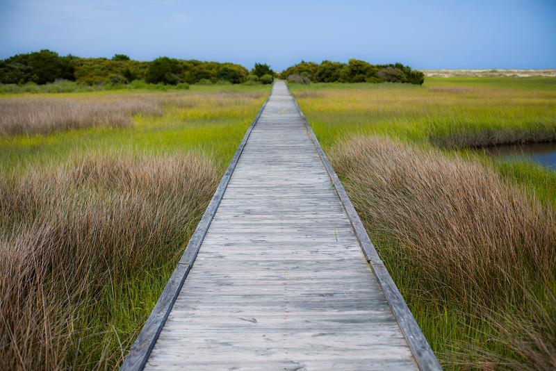 Spring Boardwalk