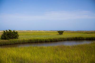 Marsh and Dunes