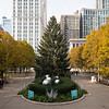 Christmas tree in Millennium Park daytime fall colors