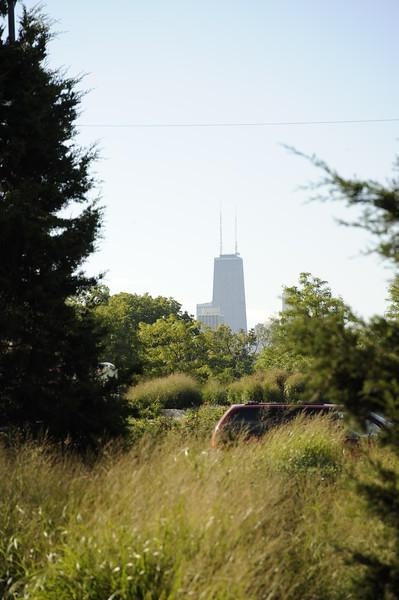 Lincoln Park which runs along Lake Shore Drive near Fullerton Avenue.