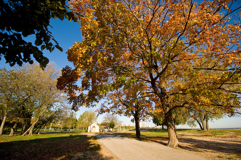 Autumn colors near Montrose Beach in Lincoln Park.