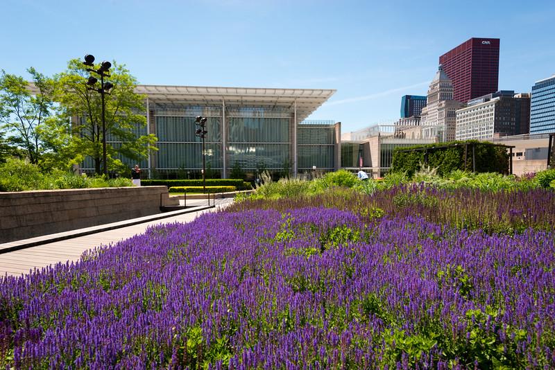 Millennium Park summer 2016 Lurie Garden Art Institute of Chicago Modern Wing
