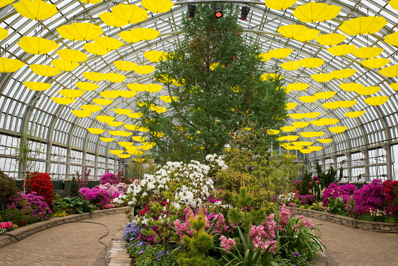 Spring Flower Show in the Garfield Park Conservatory