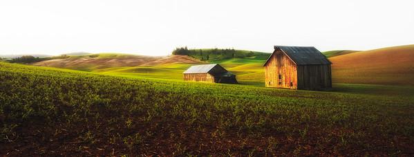 Garfield Barn in the Misty Morning