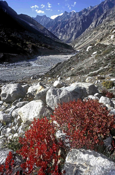Looking down the valley from Goumukh towards Gangotri