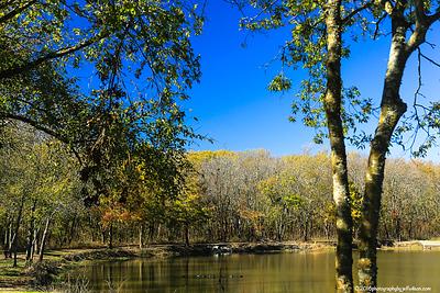 Garland Area Fall Photos
