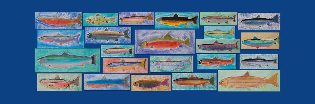 Fish Collage