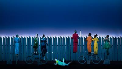 Scene I C - The Fence