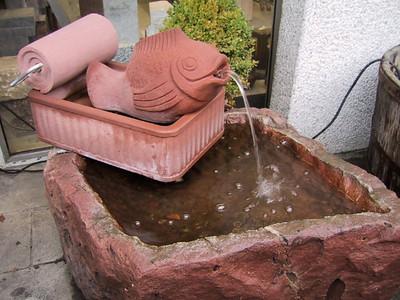 Brunnen mit Fisch in der Konserve