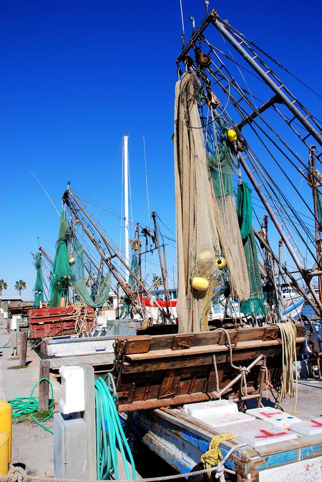 Shrimp Boats, Fulton Harbor