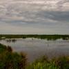 Olney Pond, Brazoria National Wildlife Refuge