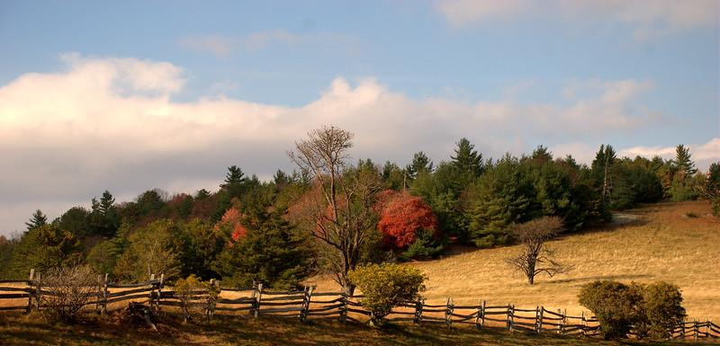 Fall Color Across From Brinegar Cabin
