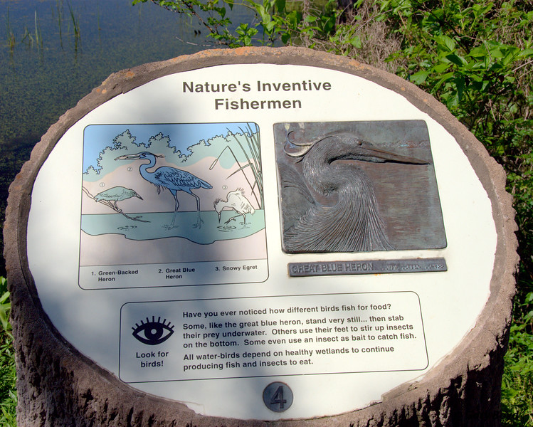 Nature's Inventive Fishermen<br /> Interpretive Station<br /> Creekfield Interpretive Trail<br /> Brazos Bend State Park