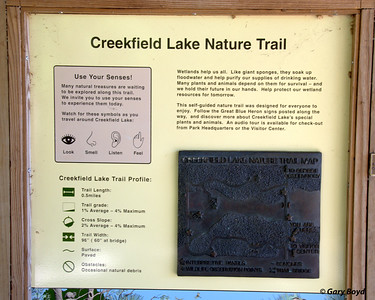 Creekfield Interpretive Trail Brazos Bend State Park