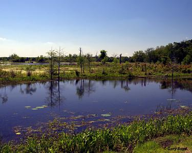 Elm Lake Brazos Bend State Park