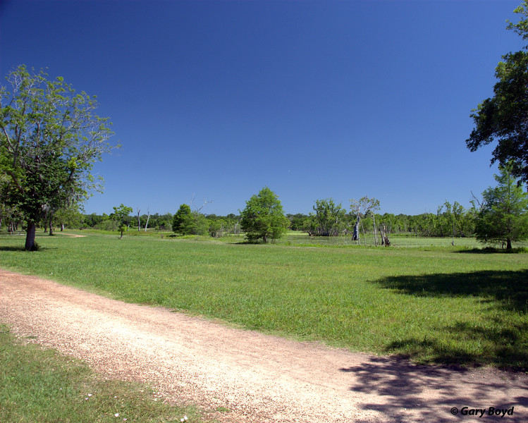 Elm Lake Loop Trail<br /> Brazos Bend State Park