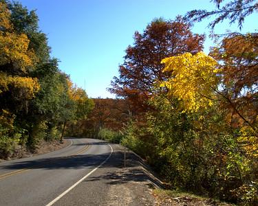 Roadside Color