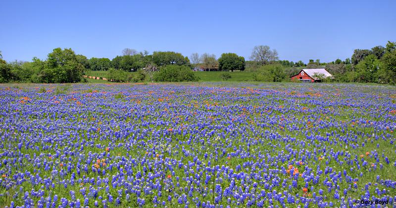 Austin County Field
