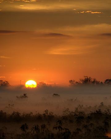 Sunrise On Fog