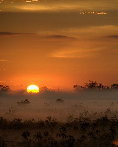 Sunrise On Fog
