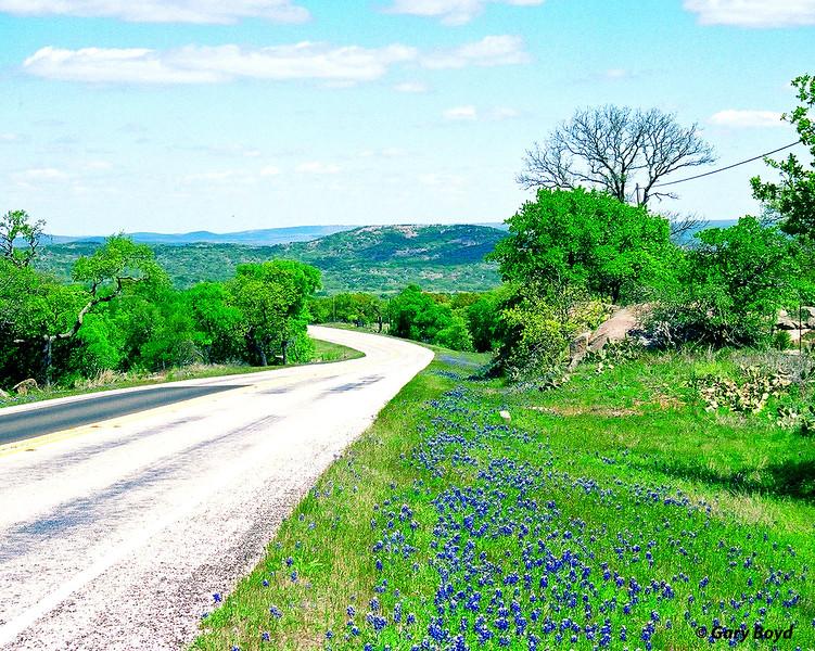 Bluebonnet Hills