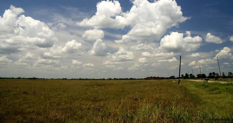 The Nash Prairie Preserve,<br /> August 15, 2011 Nash Prairie Preserve<br /> Brazoria County, TX