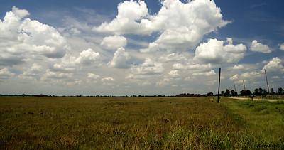 The Nash Prairie Preserve, August 15, 2011 Nash Prairie Preserve Brazoria County, TX