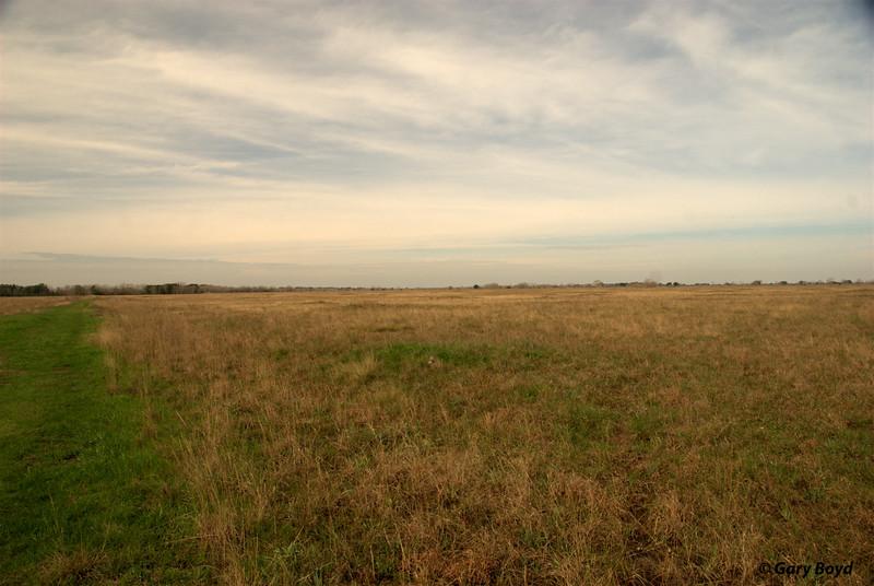 The Nash Prairie Preserve,<br /> February 6, 2012 Nash Prairie Preserve<br /> Brazoria County, TX