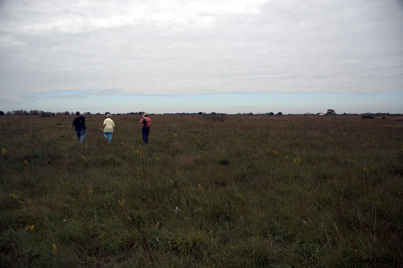 Walking the Nash Prairie Preserve