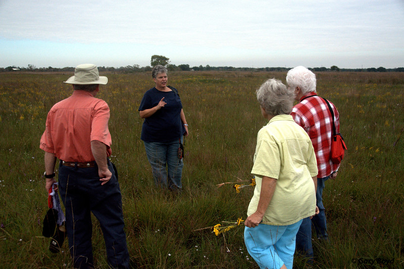 "Susan Conaty explains the ""hay meadow"""