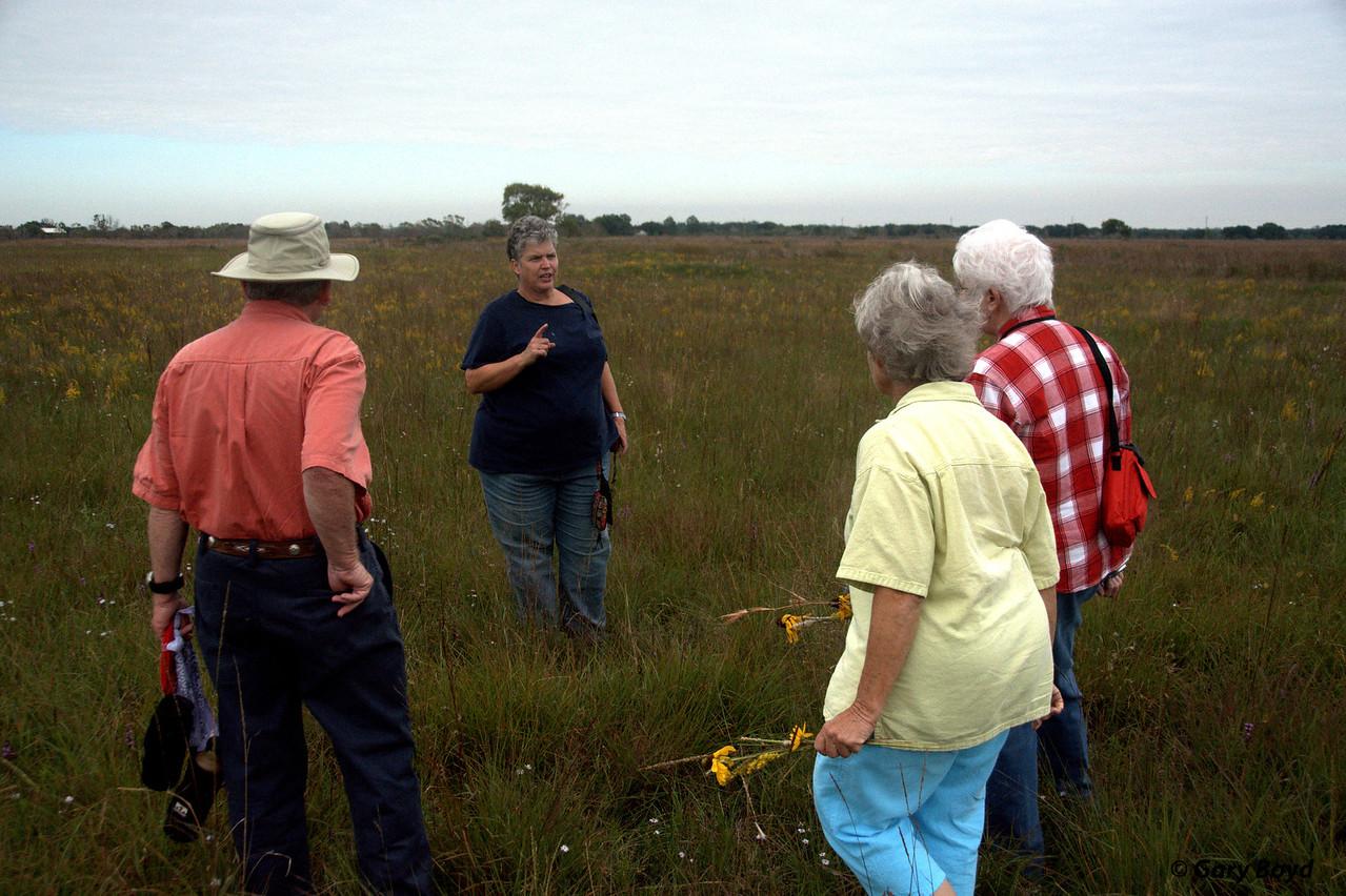 "Susan Conaty explains the ""hay meadow"""