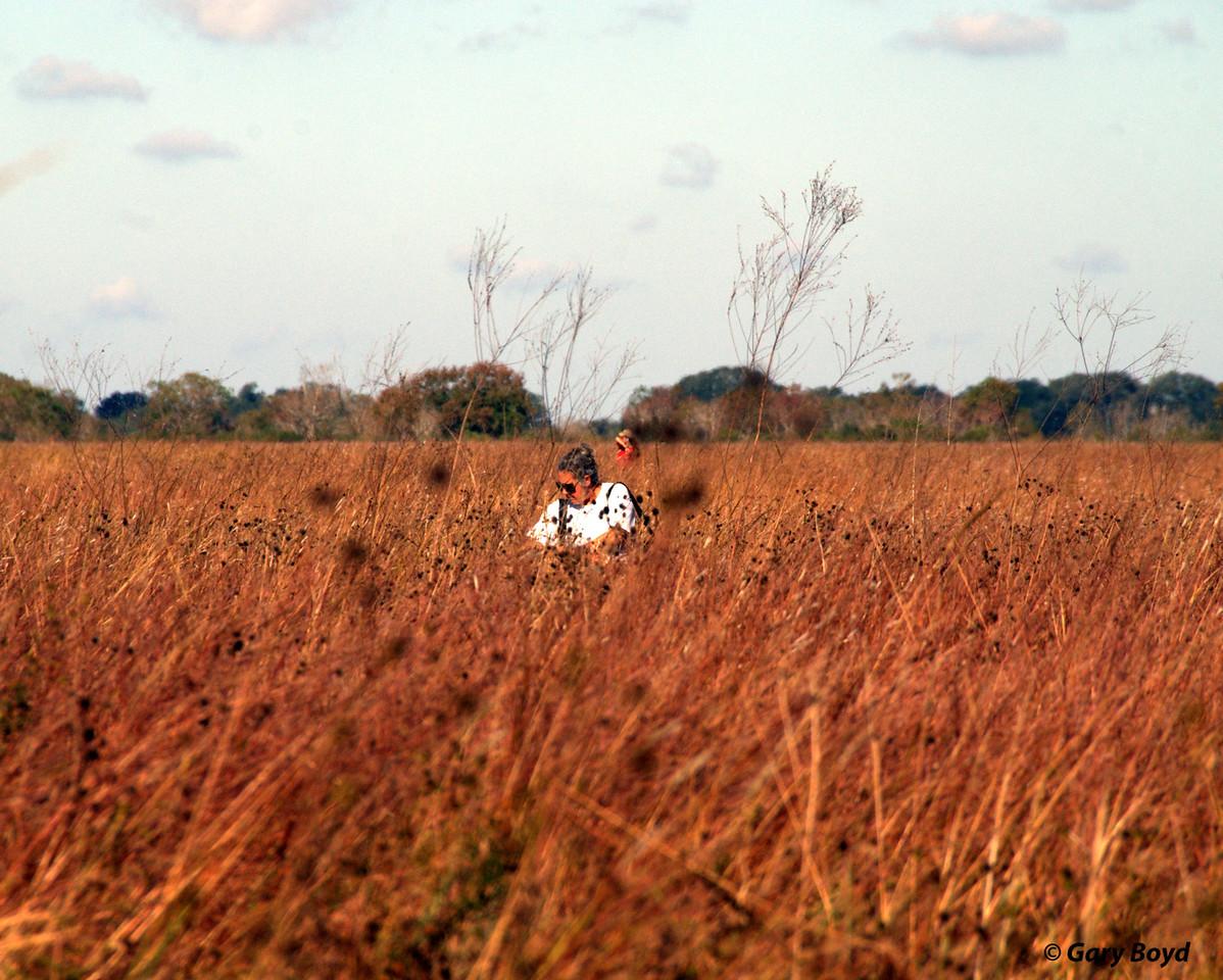 Seed Collecting - Nash Prairie Preserve,