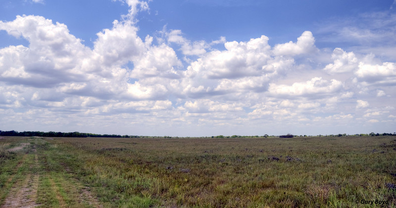 The Nash Prairie Preserve