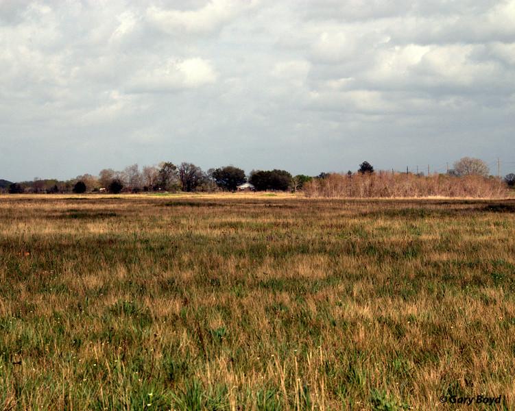 The Nash Prairie Preserve,<br /> March 7, 2012 Nash Prairie Preserve<br /> Brazoria County, TX