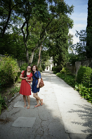 2014 08 Saint Remy de Provence