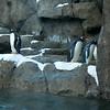 2012 05 25 Zoo-7